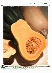 Summer Squash is full of zinc which will help get you in the mood for sex