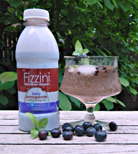 Basil Berry Fizz made with Fizzini from Hamilton Beach Canada