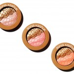 How to transition makeup into Fall - Sonia Kashuk Fall Blush and Bronzers