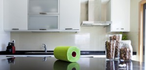 Renova Red Label Green Paper Towel