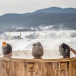 5 Stress-Free Spa Treatment Destinations We're Dreaming About: Thermal Experience at the Spa Du Verger at Hotel La Ferme – Quebec, Canada