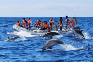 Dream Vacation: Seriously Fun Stuff to Do in the Azores, Portugal