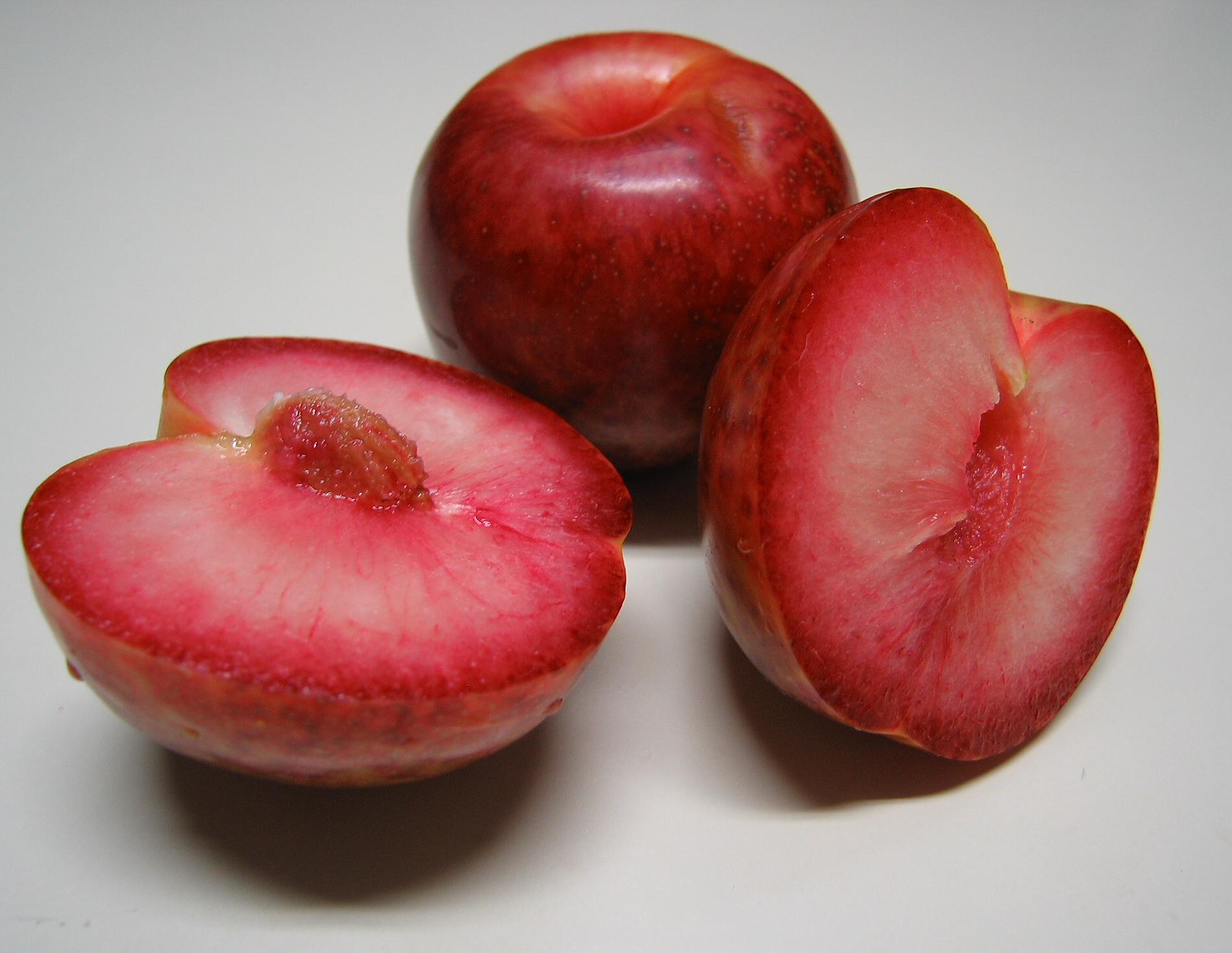 Гибрид сливы, абрикоса и персика