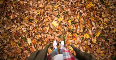Re-Leaf Tips: How to Rake Leaves Without Breaking Your Back