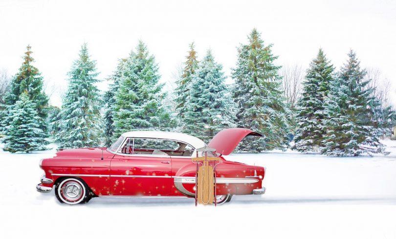 Happy Holidays: WIN a Very Brazen Christmas Tree