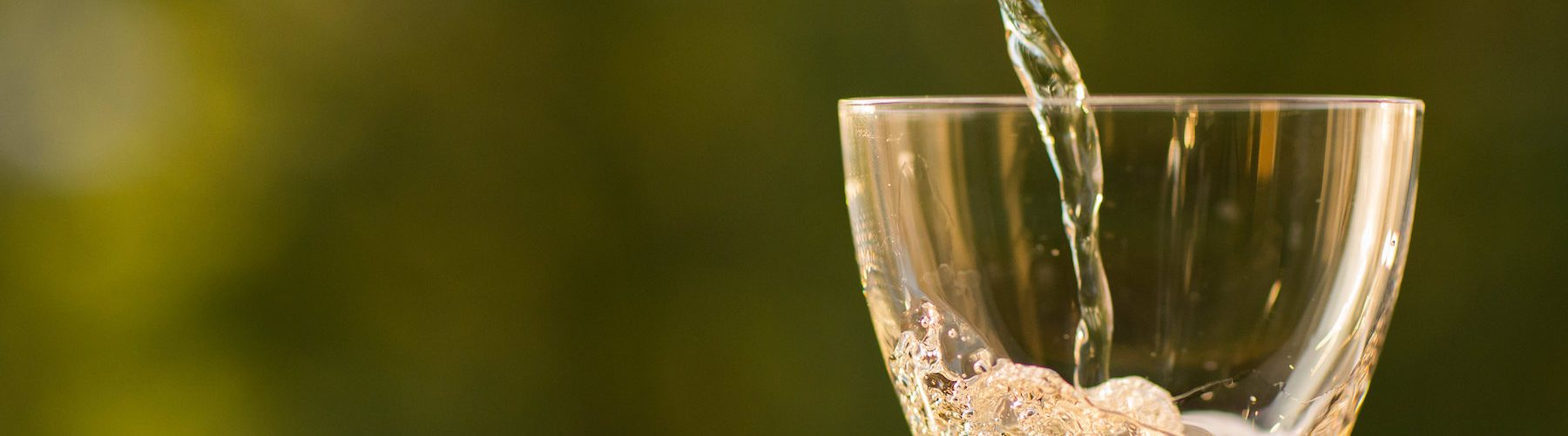 New Years Sips: The Best Bubbliest Champagne Cocktails
